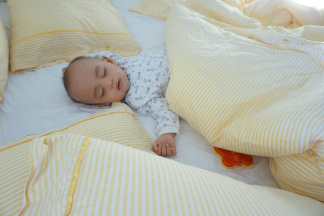 Arlanda tidur