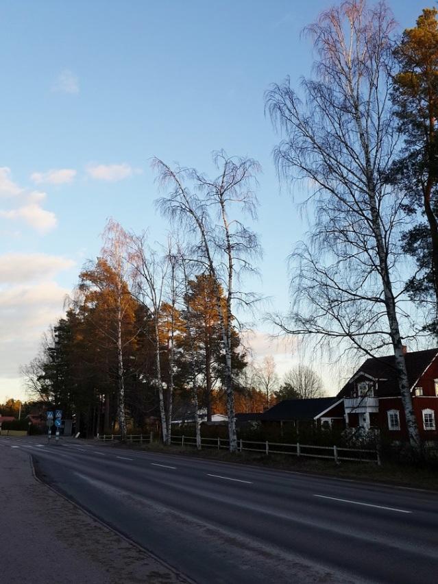 Valbo street